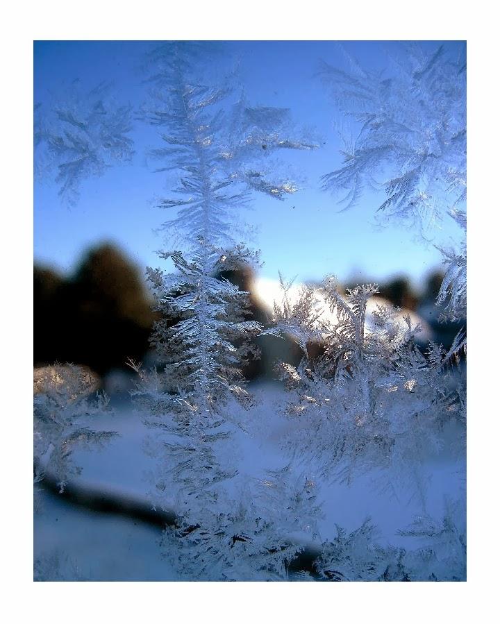 http://patricia-sundik.artistwebsites.com/featured/jack-frost-winter-ice-fantasy-patricia-sundik.html