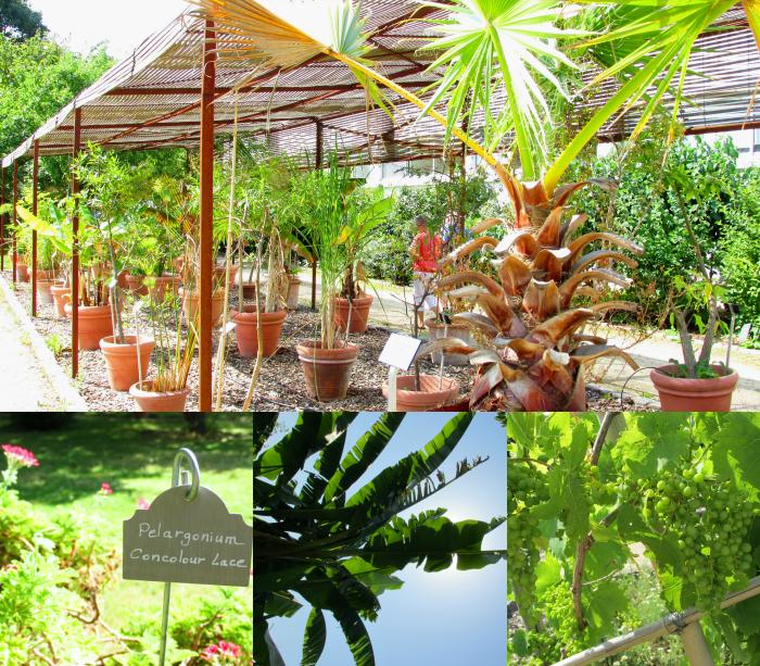 Jardin botanique des Yves Rocher - Blogger Event La Gacilly