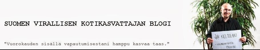 Suomen virallisen kotikasvattajan blogi