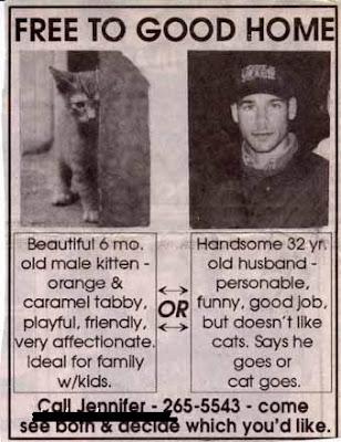 husband vs cat