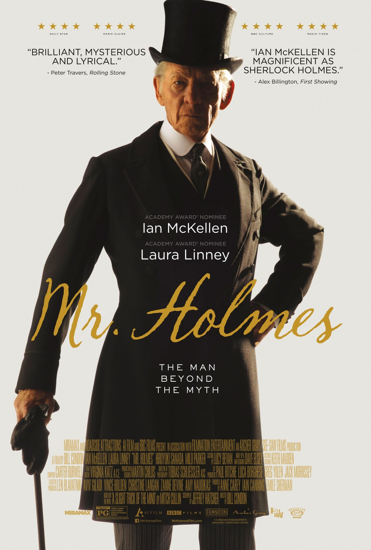 Assistir Sr. Sherlock Holmes – Dublado