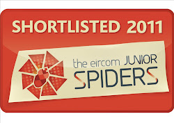 Eircom Junior Spider Award 2011