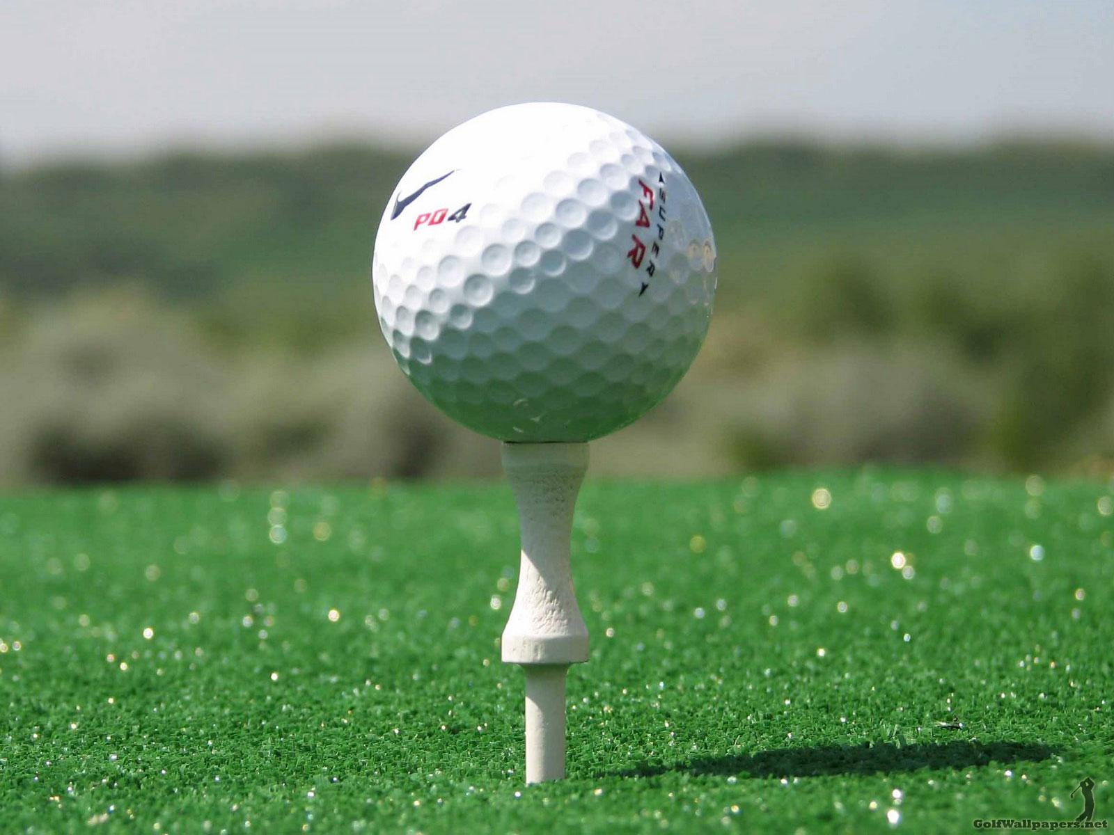 http://1.bp.blogspot.com/-rZXsrJajLrM/TjI0n4ZFwcI/AAAAAAAAFNI/hffZDeRJGTA/s1600/golfball.jpg