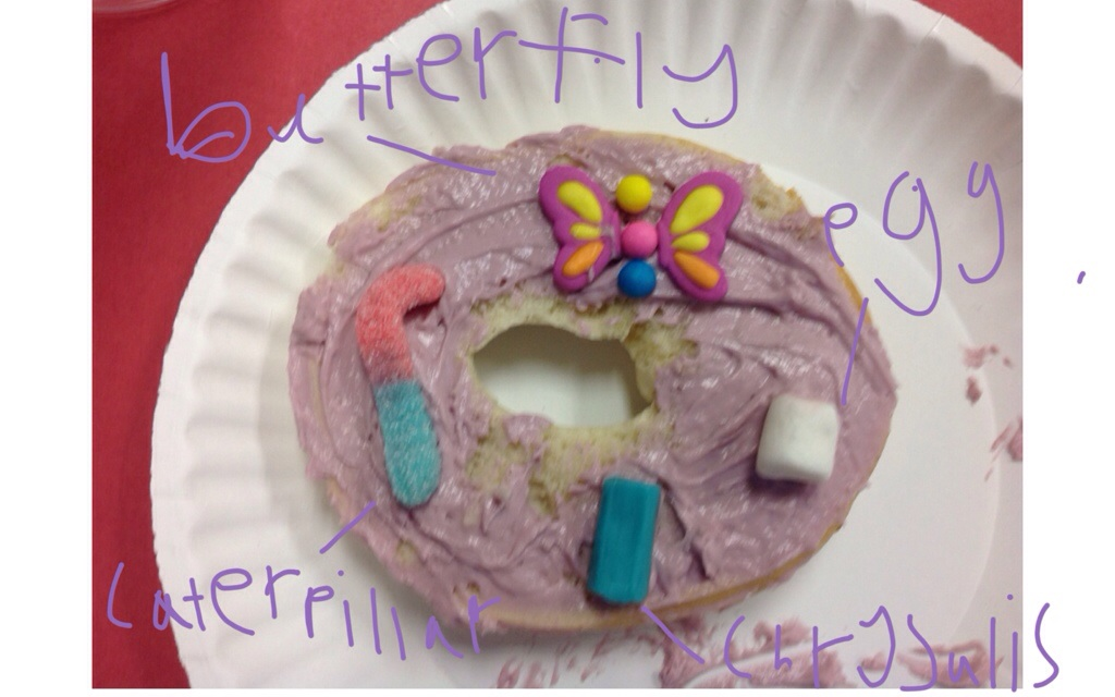 mrs t s first grade class butterfly life cycle snazzy snack