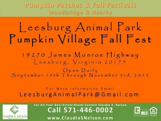 Pumpkin Patches near Woodbridge Virginia 2015, Leesburg Animal Park Pumpkin Village Fall Fest