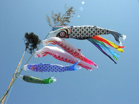 Something magickal april 2011 for Koi fish kite