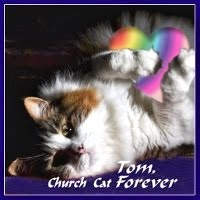 BE WELL SWEET TOM