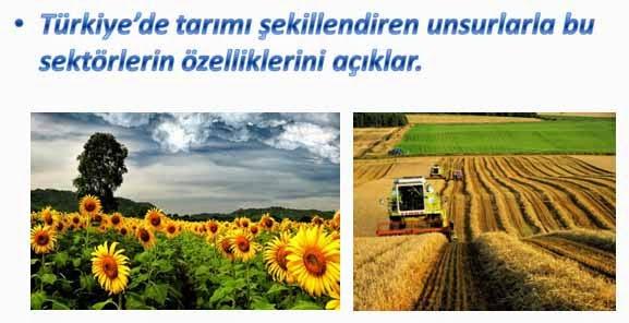 T�rkiye'de Yeti�tirilen Tar�m �r�nleri - Sunu
