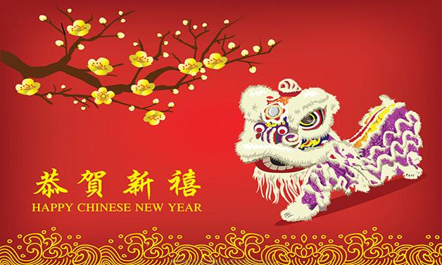 Chinese New Year Pictures 2016