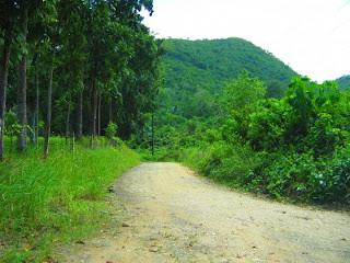 balamban cebu mountains