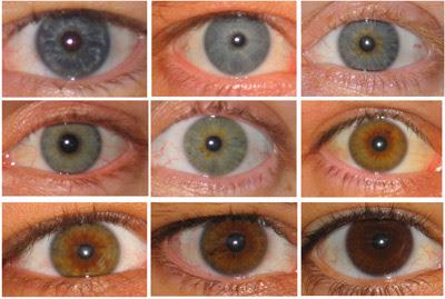 Bruna ögon, blåa ögon...