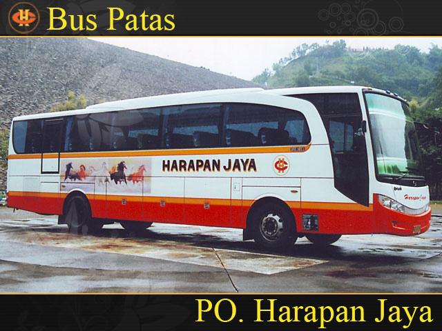 Image Result For Contact Bus Malam Patas Bus Pariwisata