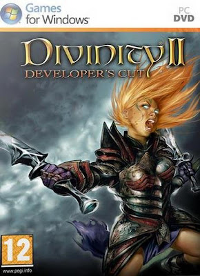 Divinity 2: Developer's Cut PC Cover