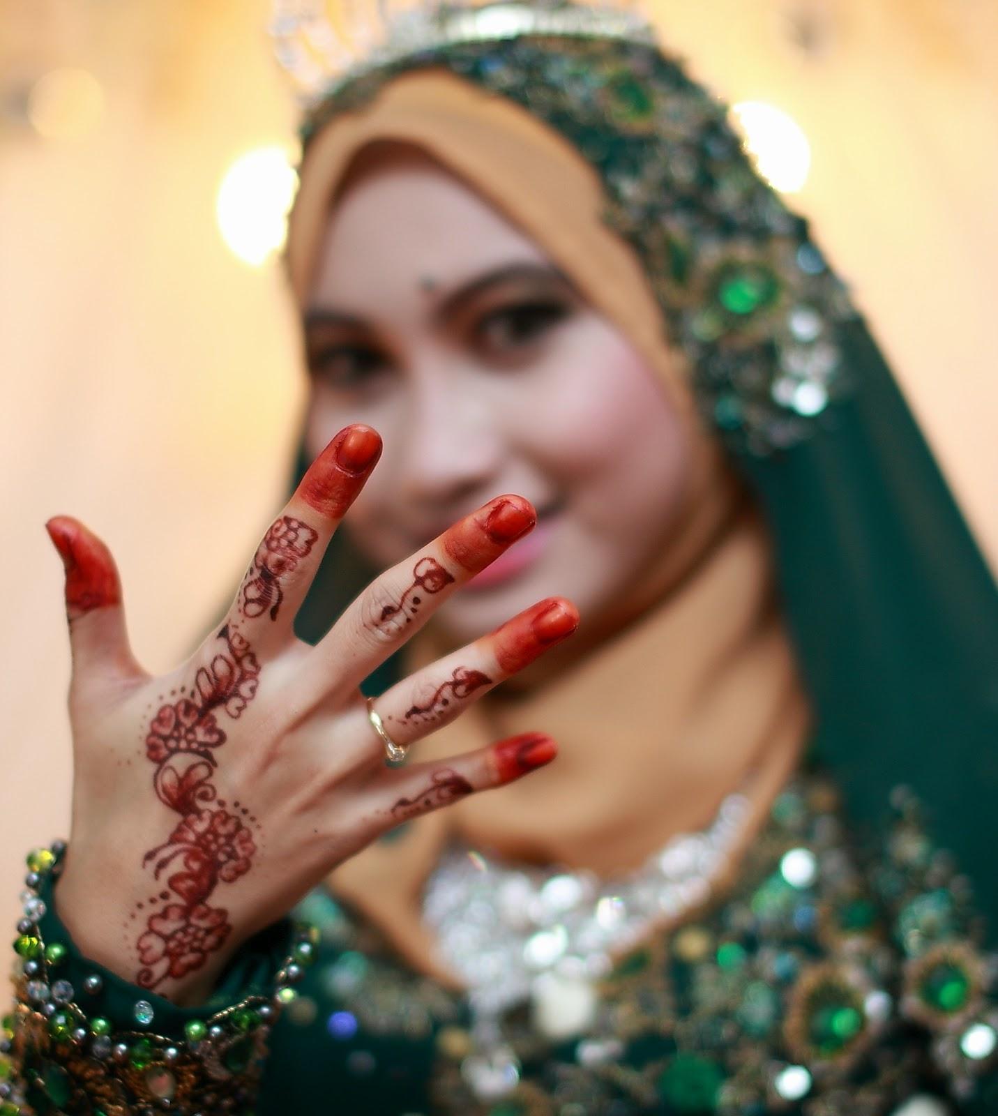 AiSkELim Review Pelamin Makeup Wedding Dress Handbouquet Dll