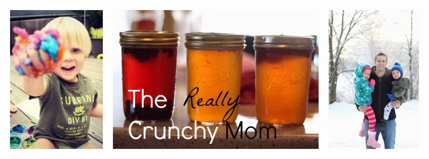 The Really Crunchy Mom