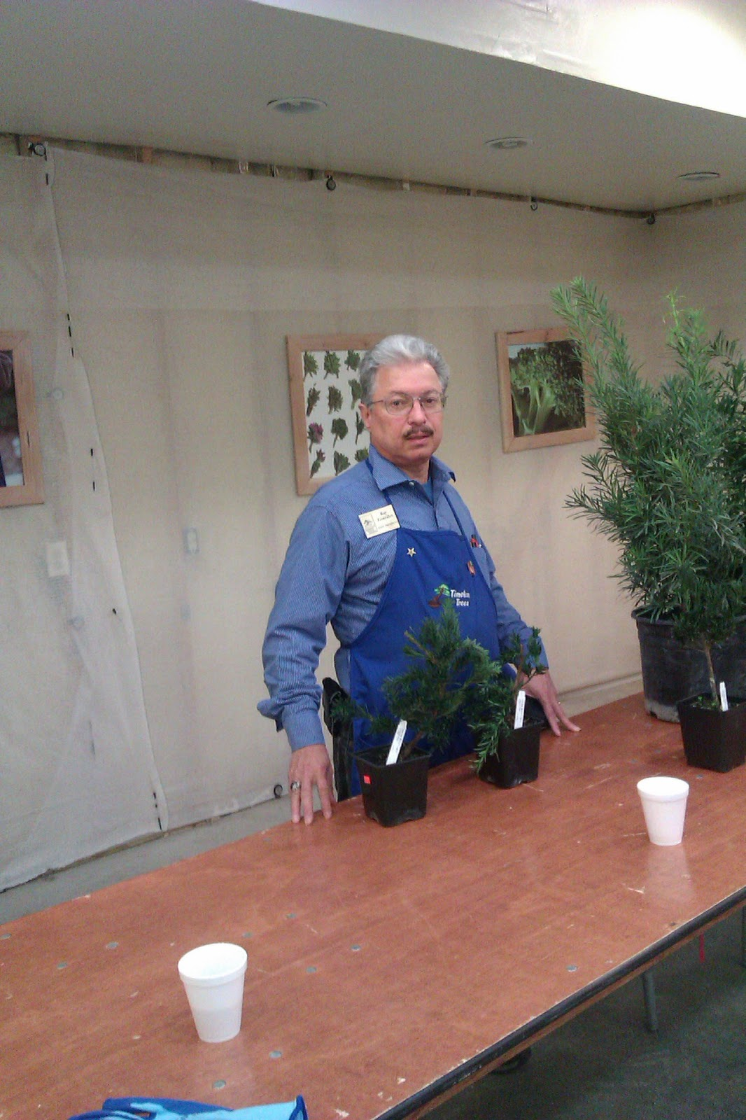 Bent Tree Bonsai Dallas Bonsai Society Demoamp Work Shops