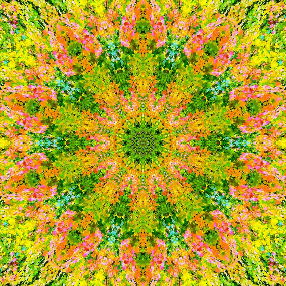 Kaleidoscope photo art by Jeanne Selep