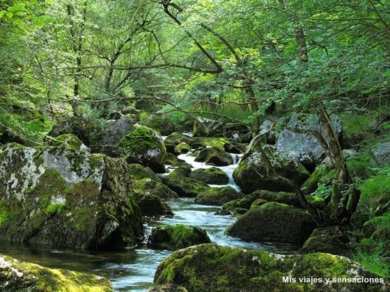 Parque Natural Collados de Asón, nacimiento del río Asón, Cantabria