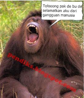 Makalah Kerusakan Habitat Orangutan Akibat Ulah Manusia_pendiks