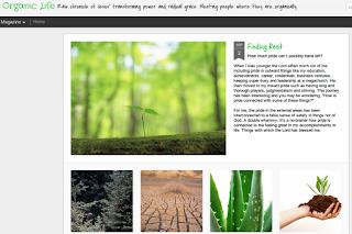 Organic Life, Beth's blog