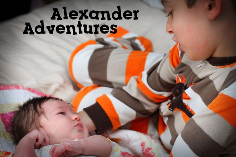 Alexander Adventures!
