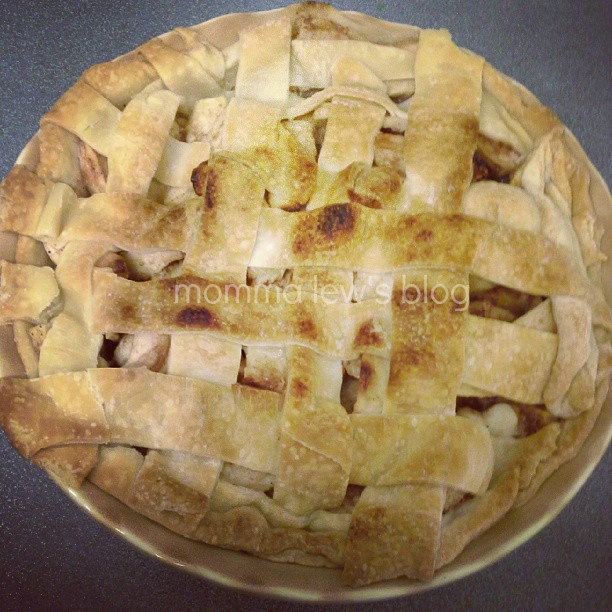 Old Fashioned Apple Pie - Momma Lew