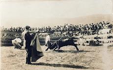 TOROS TINEO 1924