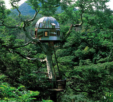 Just For Share By Enysuryo The Biggest Extreme Tree Houses 2