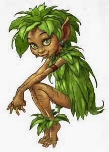 Il mio Elfo