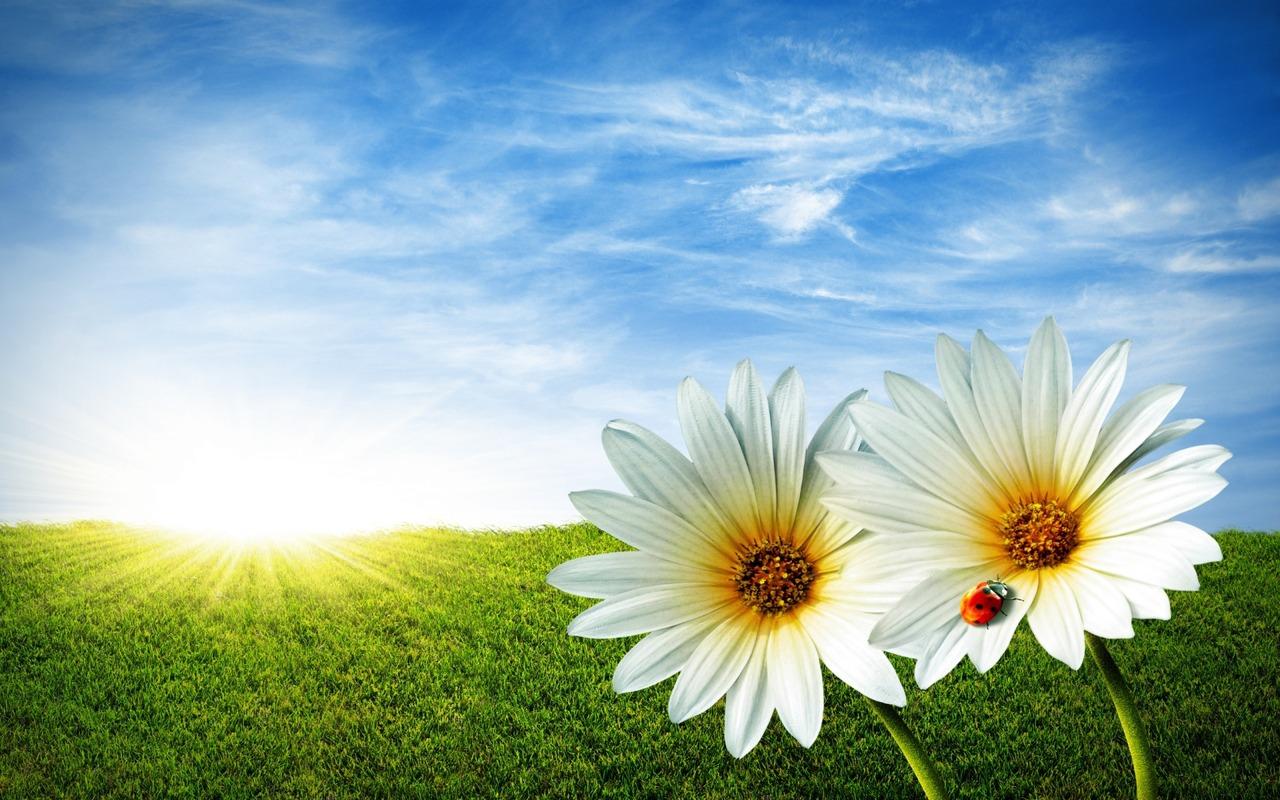 Descarca Peisaje De Vara Pentru Desktop Ul Tau