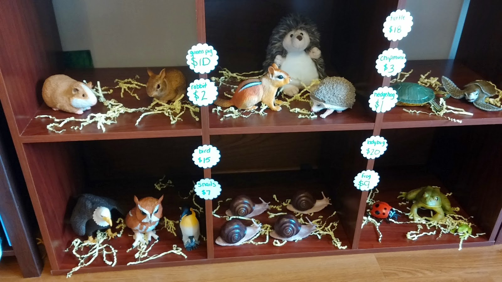 Whimsical ways pigeon 39 s pet shop grand opening - Grand petshop ...