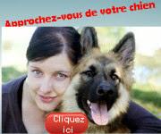 chien qui aboie: Comment Dresser son Chien à l'Attaque
