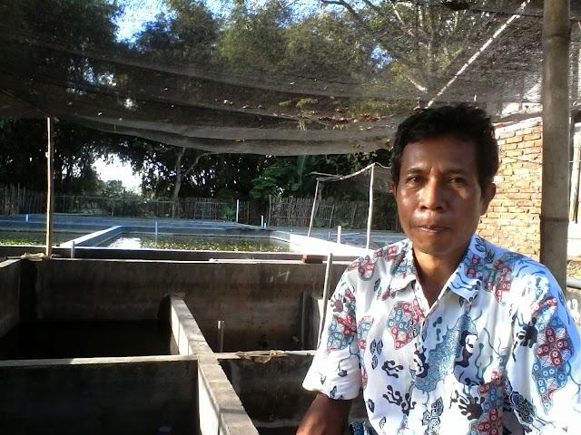 Sukses dengan Budidaya ikan Air Tawar