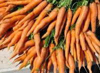 Cenoura para emagrecer e diminuir o colesterol e diabetes