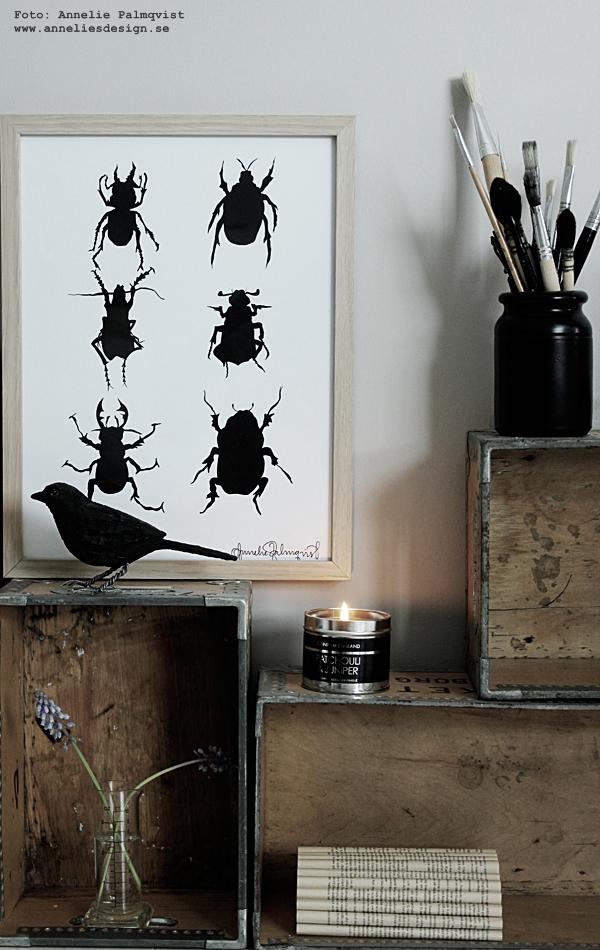 koltrast, doftljus, beson gross, varberg, grossist, inredning, skalbagge, skalbaggar, svart och vitt, svartvit, svartvita, tavla, tavlor, poster, posters, print, prints, konsttryck, annelies design, interior, vårlökar, vårblommor, ljus, ateljé, arbetsrum, arbetsrummet, lådor, hylla,