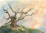 landscape paintings, tree art, watercolor artworks