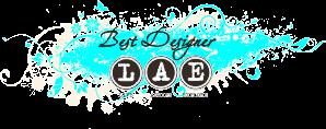 ПД блога LAE