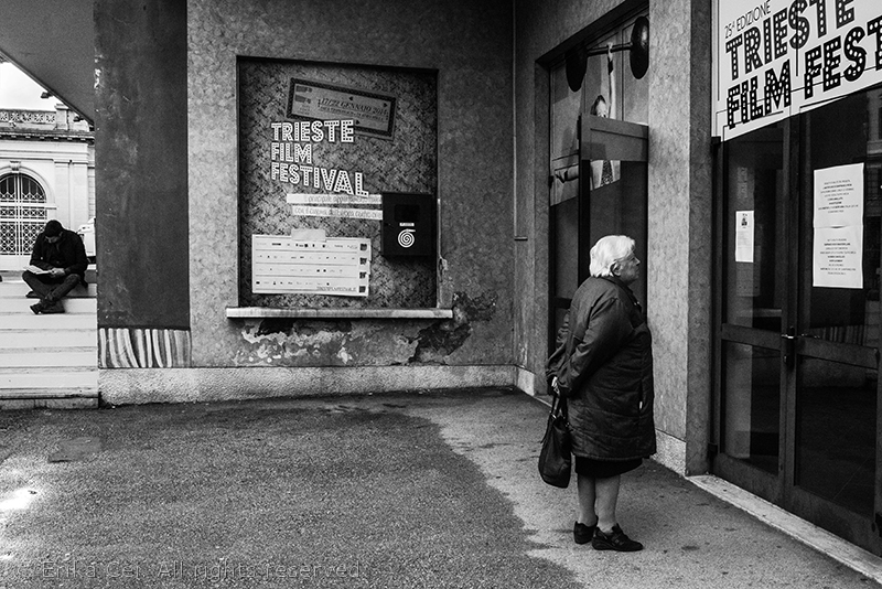 Sala Tripcovich, Trieste, Trieste Film festival 2014