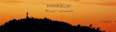 tornar a mineralCAT