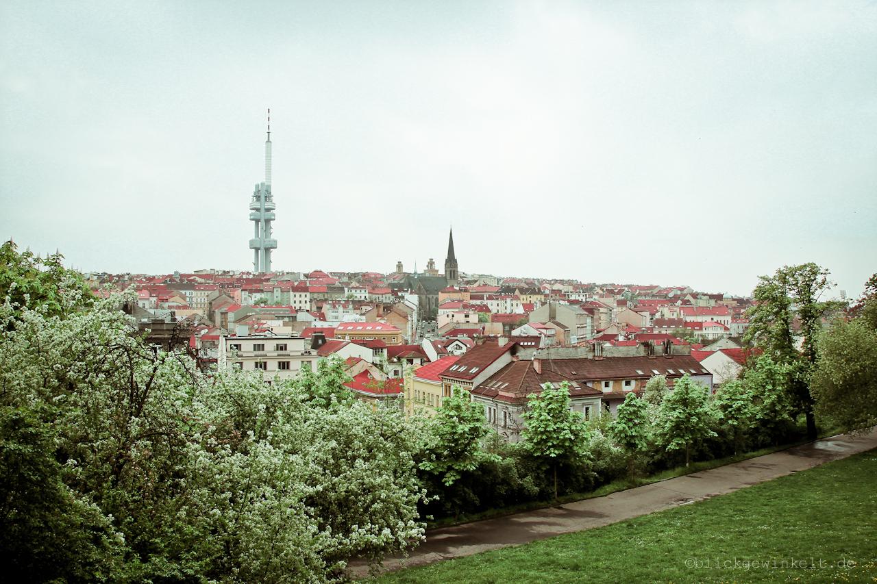 Veitsverg, Prag