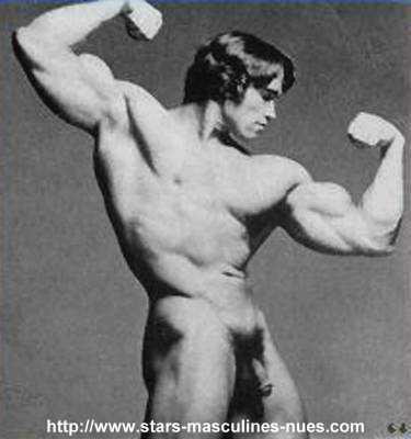 Arnold schwarzenegger desnudo en terminador