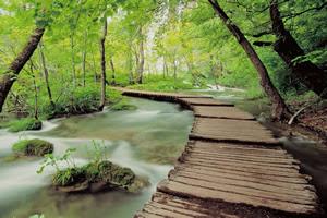 Plitvice Park public domain image