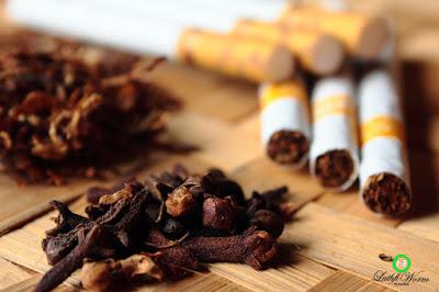 Sejarah Tembakau dan Rokok Kretek