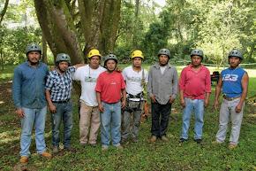 Capacitan a personal municipal sobre trepa y poda de árboles