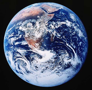 Modern environmental movement essay