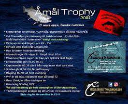 Åmål Trophy 2018