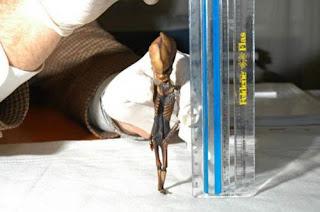 Múmia é encontrada no chile e possui 15 centímetros