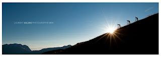 ©Laurent Salino Photographie 2011