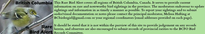 British Columbia Bird Alert
