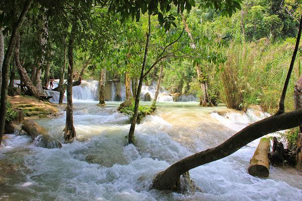Kuang Xi Chutes d'eau - Luang Prabang
